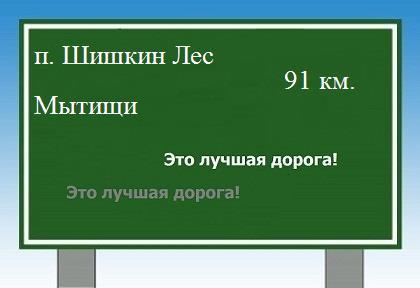 Дорога из поселка Шишкин Лес в